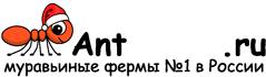 Муравьиные фермы AntFarms.ru - Саратов